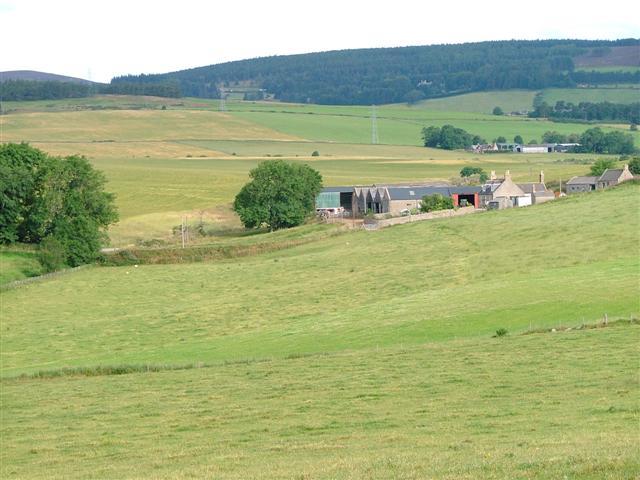 Blackmill Farm