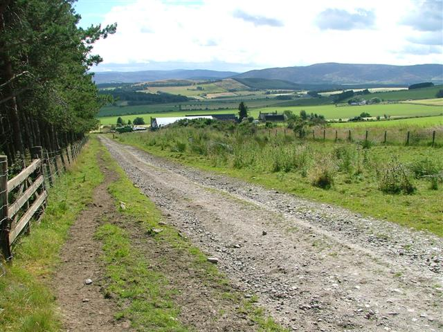 Track Above Boig Looking South