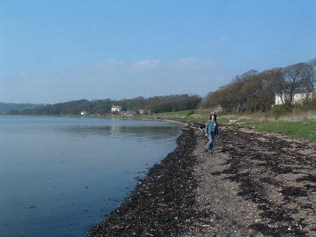 Shoreline at Crombie Point