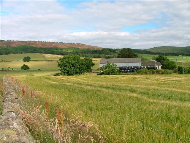 Back of Boghead Farm