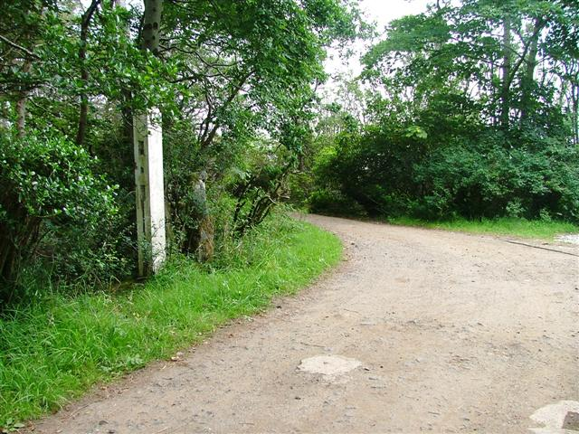 Gate Post and Track Junction to the Lodge