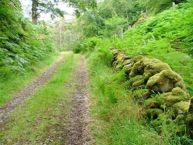 Track and Ruined Wall, Allt Achadh na-Toine