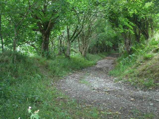 Bridleway near Brynhinlle Rhydlewis
