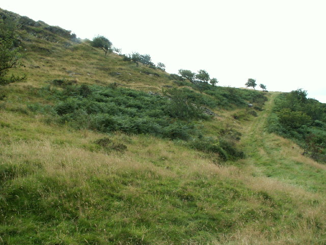 Hillside trackway, Disgwylfa