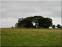 NY9369 : St Oswalds Church by Peter Brooks