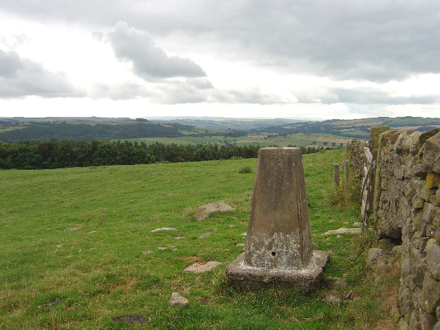 Trig point at the top of Warden Hill