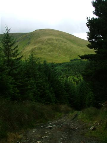 North West Spur of Meall Mor