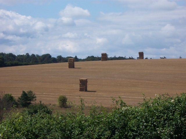 Straw stacks, Kings Somborne