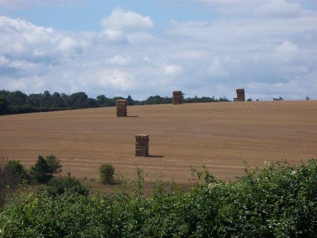 Straw stacks, Kings Somborne