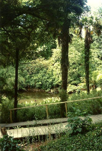 Mawnan Smith: Trebah Garden