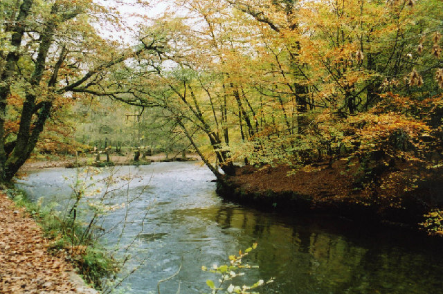 Plymouth: The Plym in Bickleigh Vale