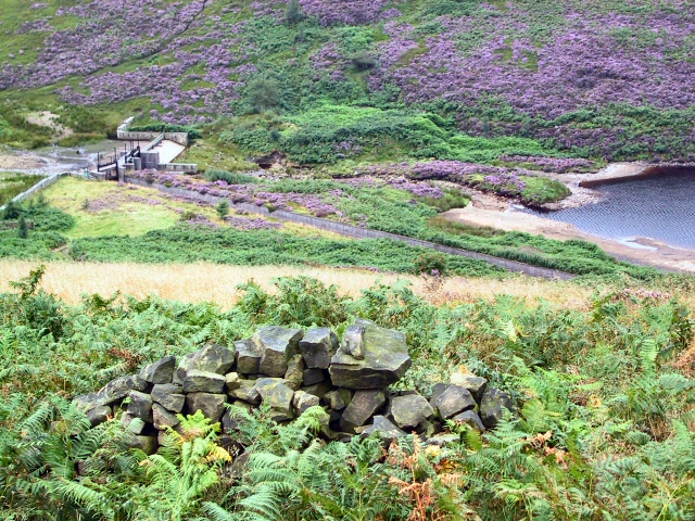 Weir amongst the Heather