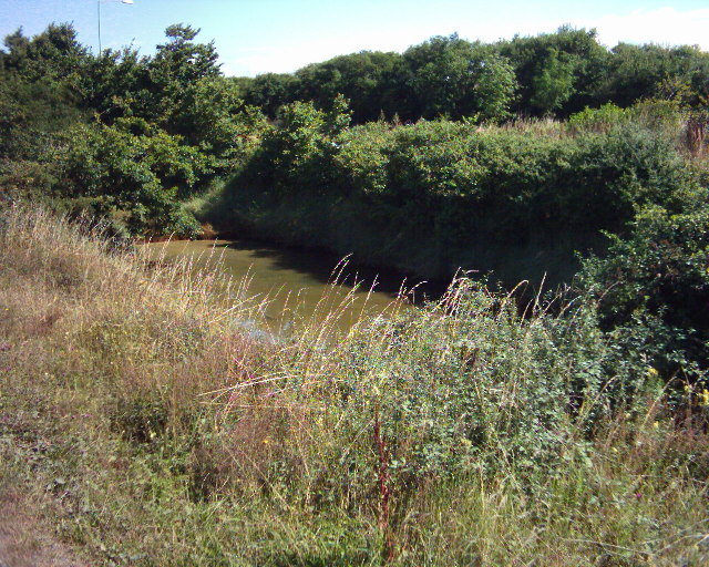 Stagnant drainage pond
