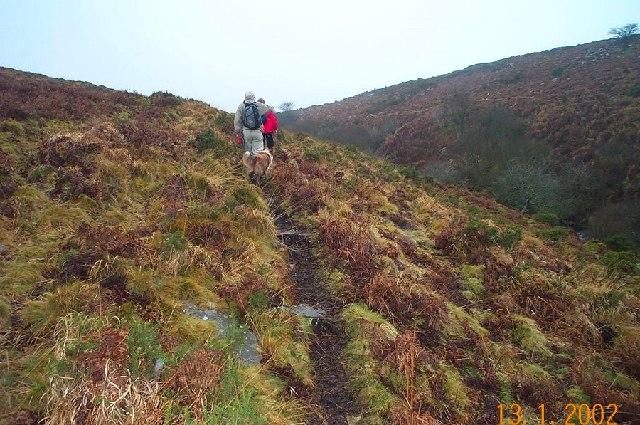Blackaton Gorge - Dartmoor