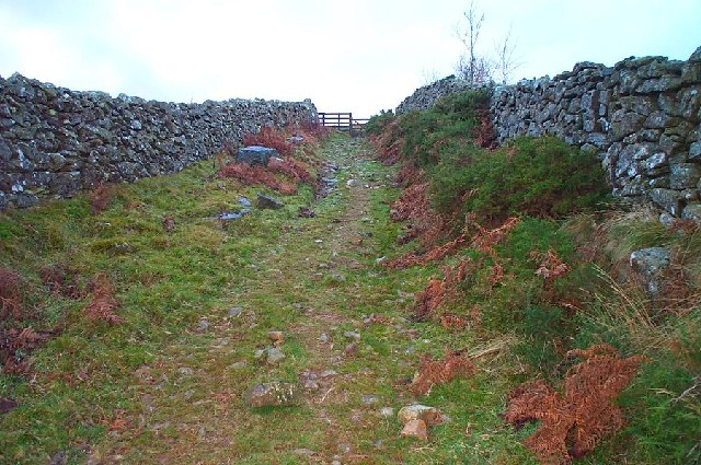 Trackway leading up to the moor