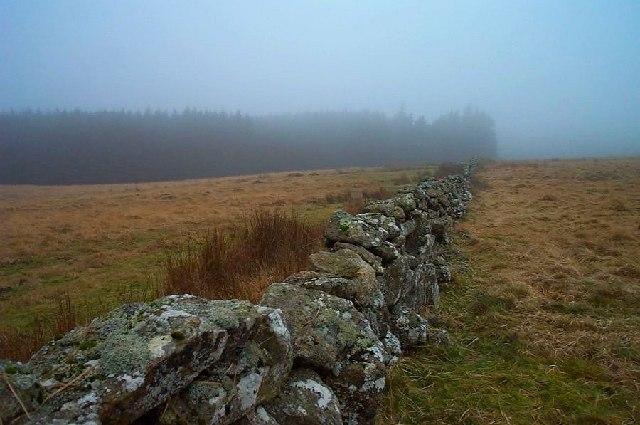 Wall near Fernworthy - Dartmoor