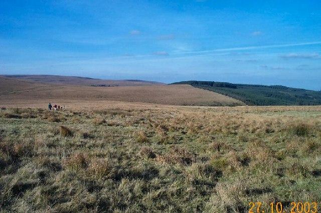 White Ridge - Dartmoor