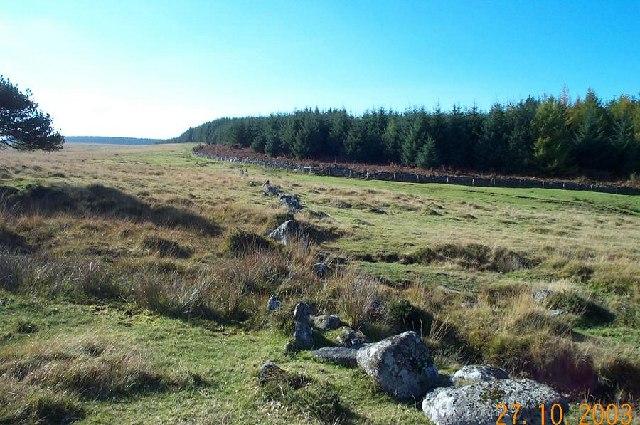 Prehistoric Fernworthy wall - Dartmoor