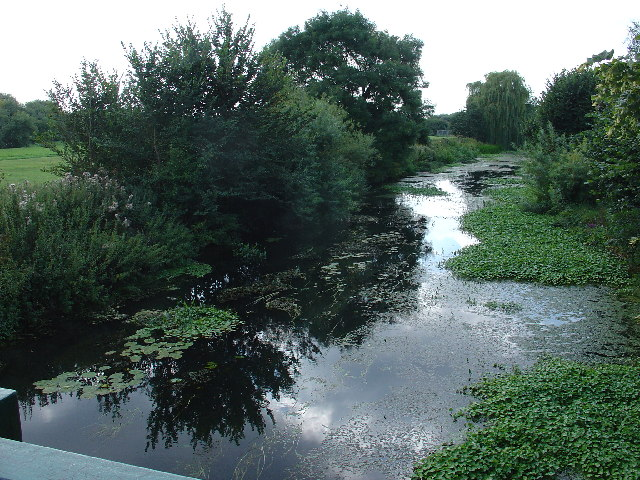 River Mole, East Molesey