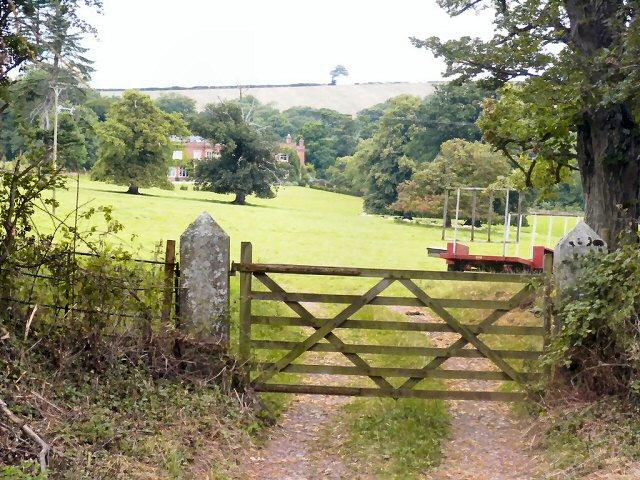 looking N from West Raddon Cross