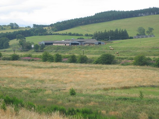 Wetland, Haltree
