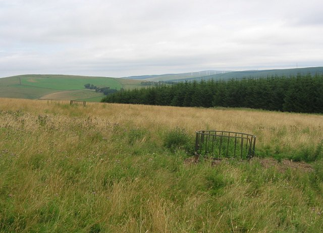Pasture, Crookston Mains Hill
