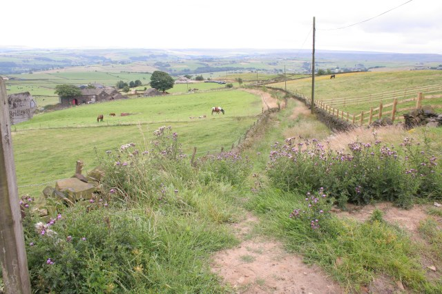 Bridleway, Toot HIll