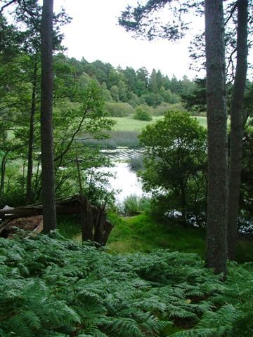 Loch Davan