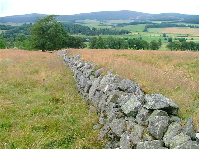 Ruined Wall, Drummy Muir