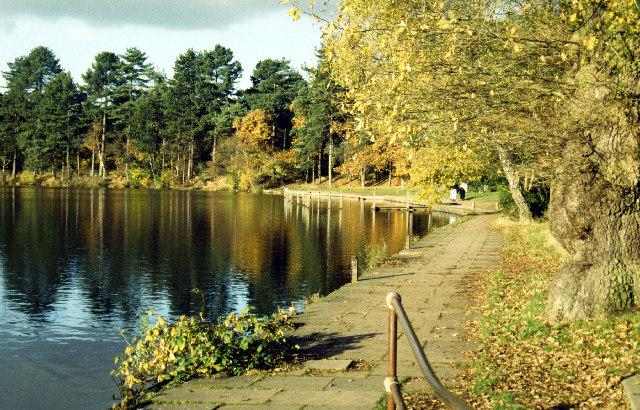 Blackroot Pool, Sutton Park