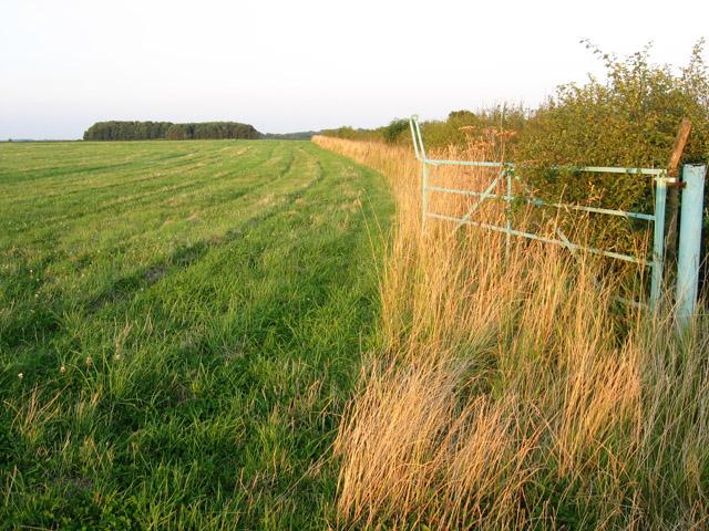Farmland alongside Sewstern Lane