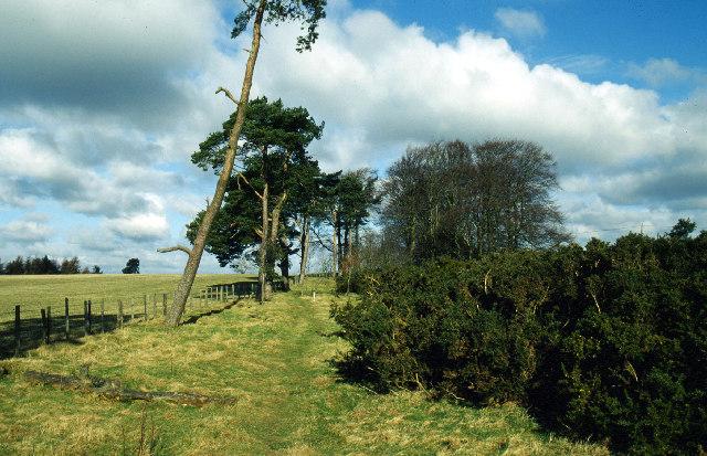 Offa's Dyke Path near Hengwm Hill