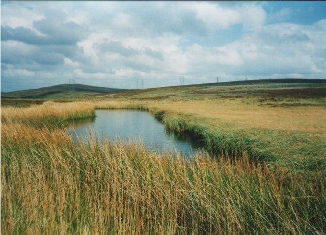 Blackfield Loch by John Wallace