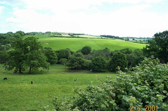 Near Dartington