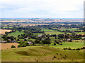 SU1163 : Walkers Hill, Pewsey Downs by Chris Collard