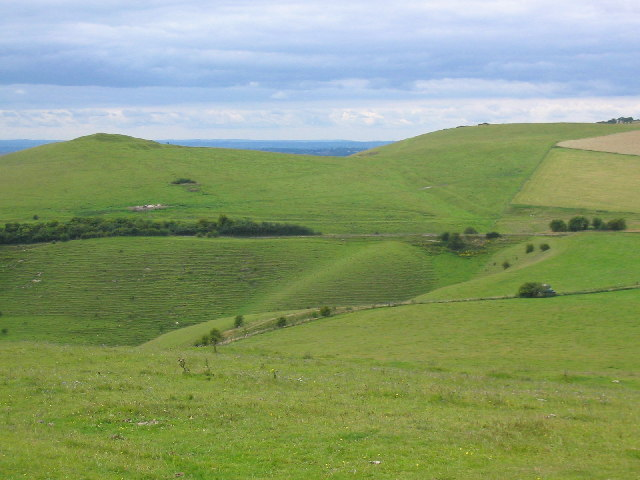 View West, Knap Hill, Pewsey Downs