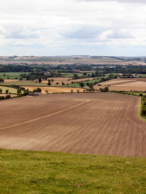 View South, Knap Hill, Pewsey Downs