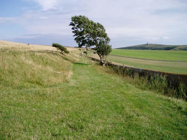 Track near Birling Farm