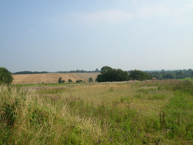 View of grid square TG3606, Buckenham