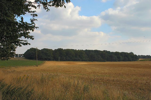 Higham Heath