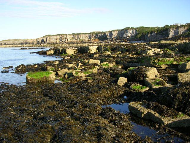 Coastal scene near Moelfre