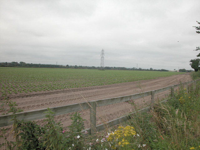 Sealand Road farmland