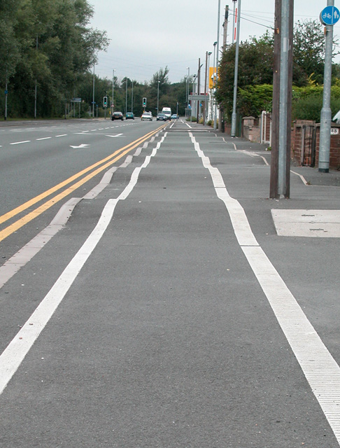 Speed Bumps for Cyclists ?