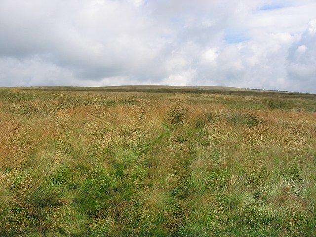 Priesthill Moor