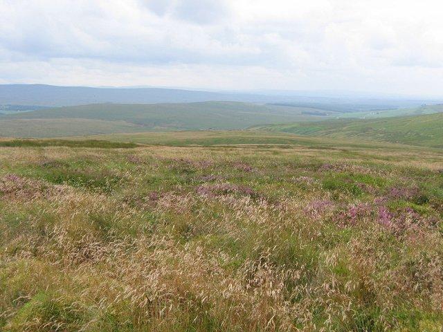 Priesthill Moor.