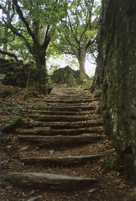 Portmeirion estate footpath