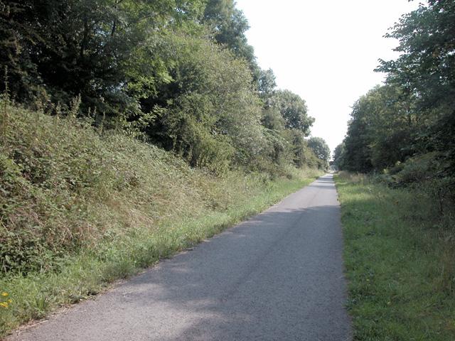 Millennium Cycleway