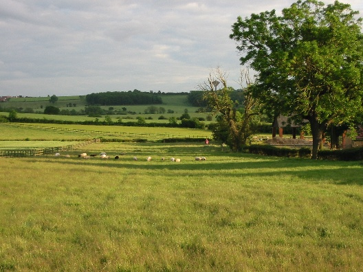 Old Thorpe Audlin looking toward Upton Beacon and water tower