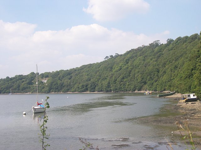 Hooe Woods and the River Tamar