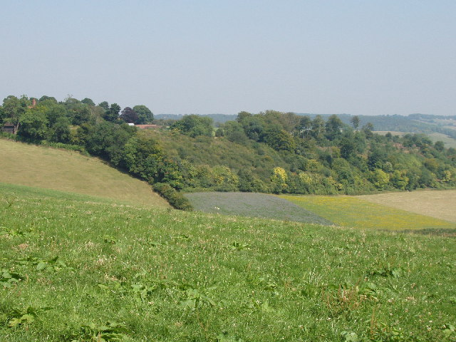 Turville Court from Summer Heath